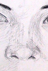 Nase Zeichnung